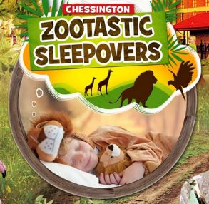From as little as £33 per person, join us for a sleepover like no other! With the brand new How to be a Zoo Keeper LIVE!, giraffe sneak peeks and more, there's no reason not to book a Zootastic Sleepover today!